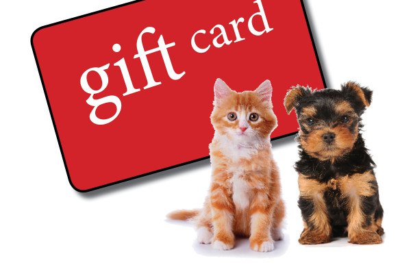 Gift Card Request for Facebook 2